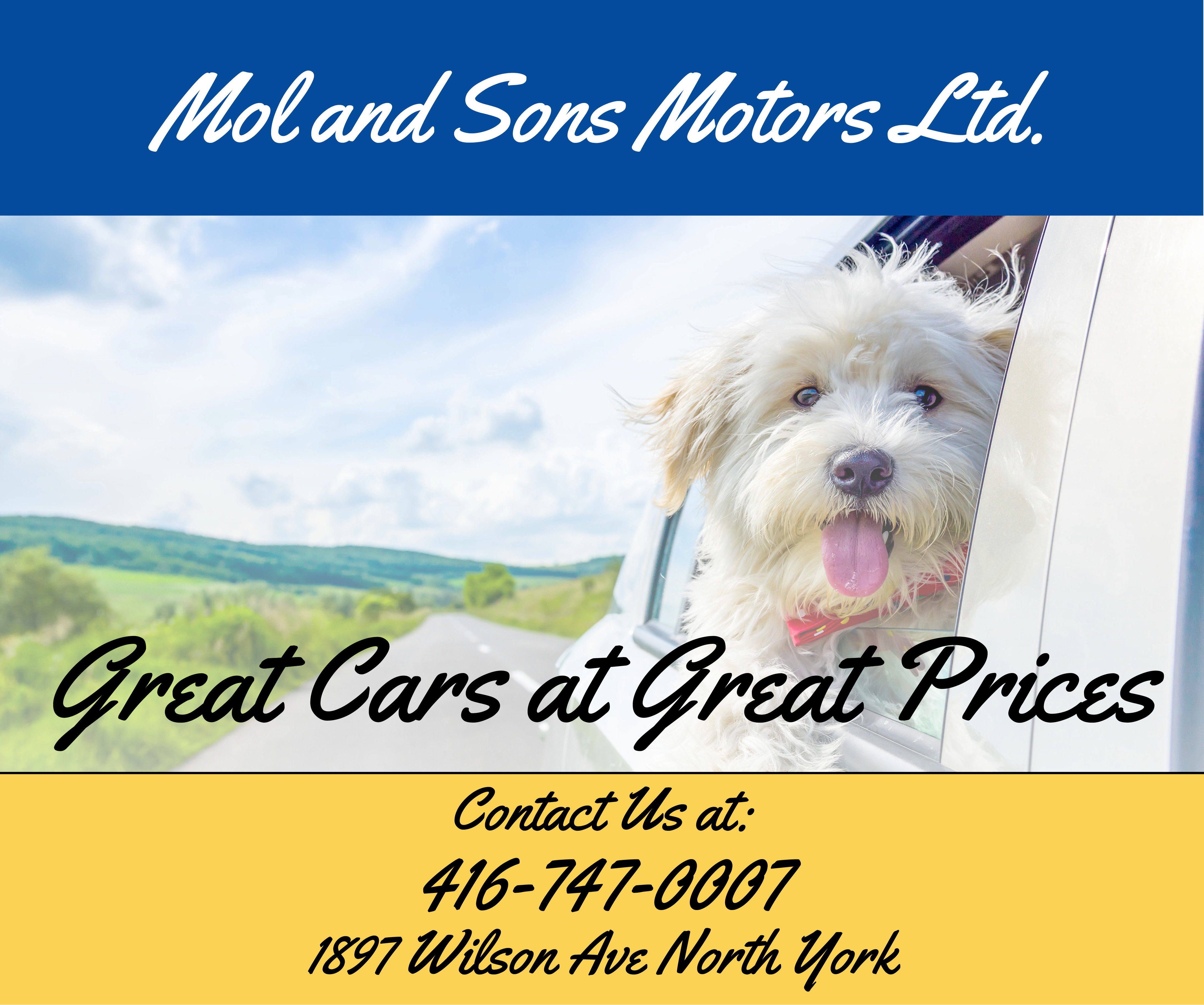More from Mol and Sons Motors Ltd.